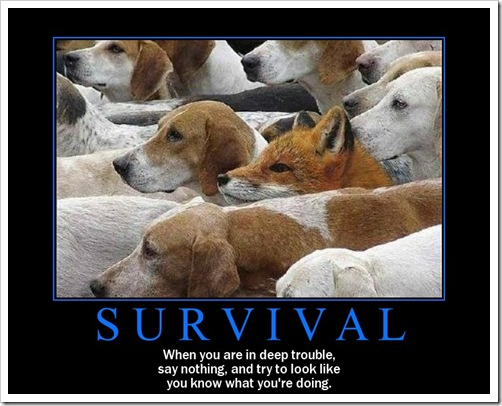 Thursdays Need Motivation – Survival