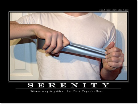 Serenity Motivational Poster