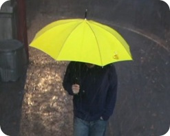 the-Yellow-Umbrella